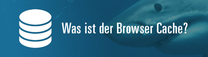 Was ist der Browser Cache?